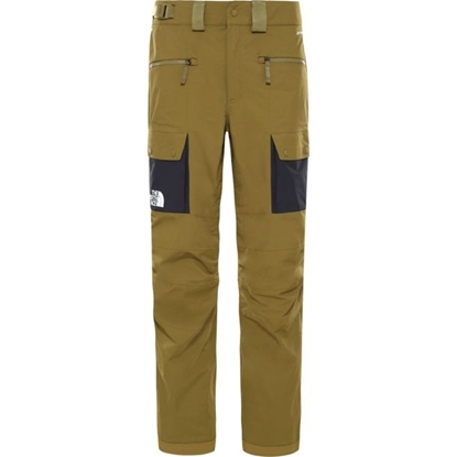 Bilde av THE NORTH FACE Mens Shashback Cargo Pants Green